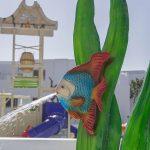 Savia Sentido Lanzarote Aequora parque acuático infantil chorro pez algas