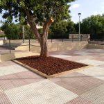 Savia proyectos vegetación y tierra Ayto Palmanyola