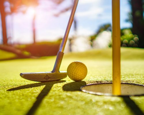 Savia proyectos minigolf palo pelota golf hoyo césped